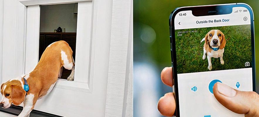 Advancement of Garage Door Technology – MyQ Pet Portal