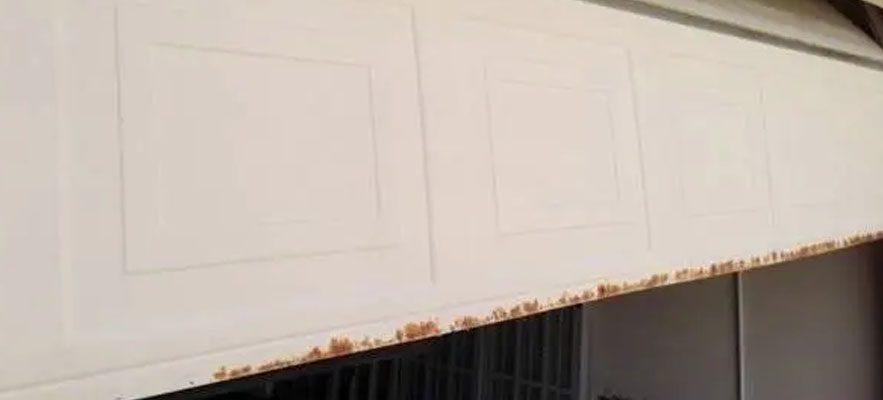 Garage Door Rust – The Silent Killer